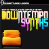 Synth Sounds of Montra – Downtempo Synths