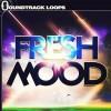 Fresh Mood – Garageband Nanostudio and Beatmaker Kits