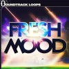 Fresh Mood - Garageband Nanostudio and Beatmaker Kits